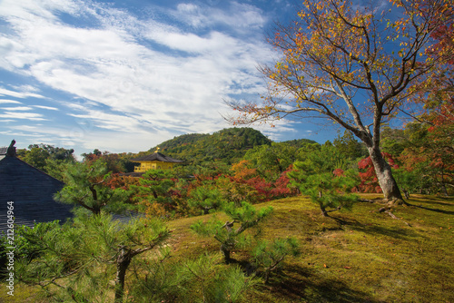 Photographie Top view of Kinkakuji temple in autumn