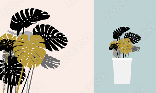 Monstera deliciosa or swiss cheese plant tropical leaves vector illustration