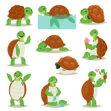Turtle Vector Cartoon Seaturtl...