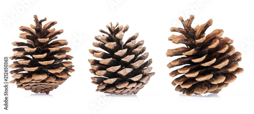 Fototapeta  Pine cones isolated on white background