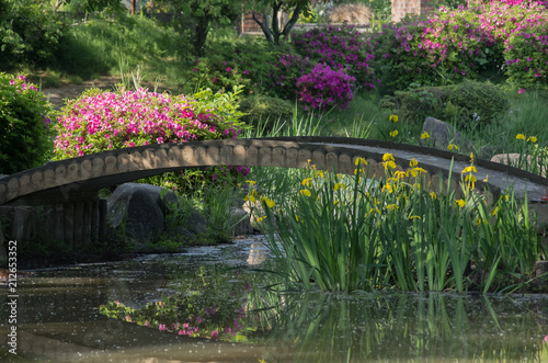 Obraz na plátně  躑躅と黄菖蒲の咲く風景