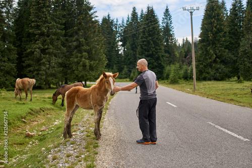 Fotografía  Man caressing a baby horse