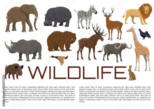 Photo Vector wildlife poster of wild animals