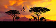 illustration of a bright sunset in africa, safari with wild animals: giraffes and elephants against the background of sunset in the savannah