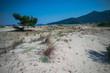 Wild beach in Thassos island, Greece