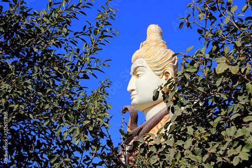 Face of Shiva behind Foliage