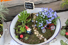 Little Gnome Fairy Garden In A Metal Pan