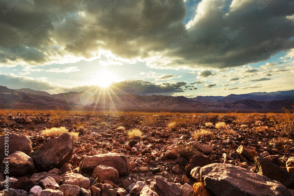 Fototapety, obrazy: Prairie