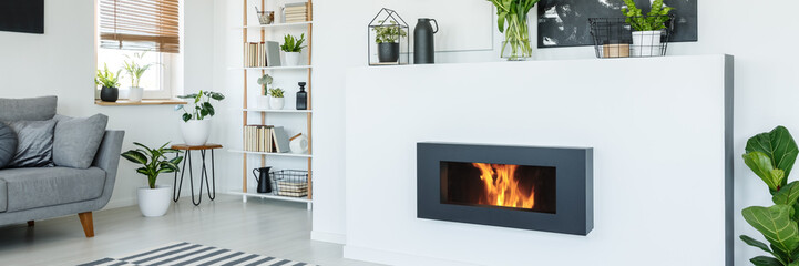 Obraz na Szkle A stylish, lit bio fireplace in a living room interior of a modern, monochromatic apartment with white walls, wooden furniture and plants