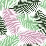 jasnozielony gark zielone i różowe liście palmowe na białym tle egzotyczne tropikalne hawaje pastelowe lato wektor wzór - 212723103