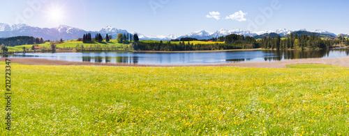 Spoed Foto op Canvas Blauwe hemel Frühling im Allgäu bei Füssen
