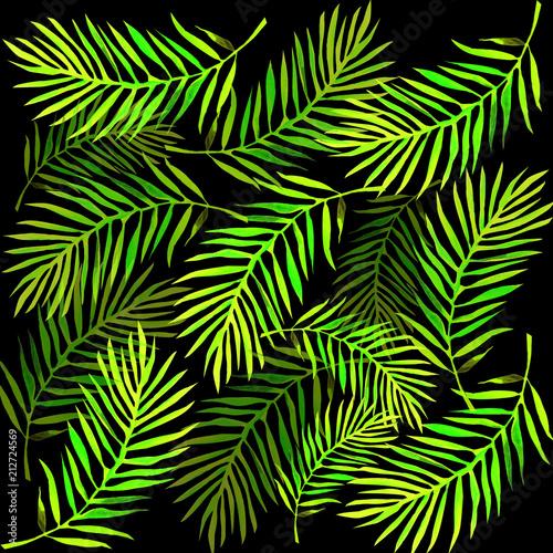 Ingelijste posters Tropische Bladeren palm leaves background