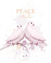 Watercolor Doves Birds Vector. Peace Card Delicate Design Posters