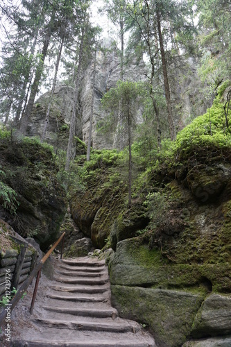 Tuinposter Weg in bos Szlak wśród skał w Skalnych miastach w Teplicach w Czechach