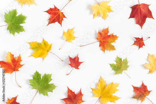 Autumn composition. Pattern made of autumn maple leaves on white background. Flat lay, top view