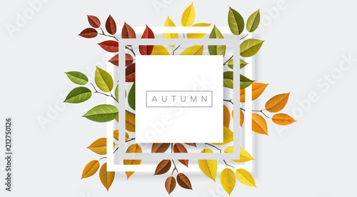 Autumn nature geometric frame with branches and leaf Fototapeta