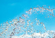 water jet with spray on the sky background