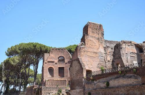 Foto op Aluminium Oude gebouw The Roman Forum