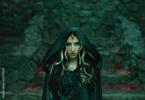 Image of Gorgon Medusa, braid hair and gold snakes, close-up portrait Wallpaper Mural