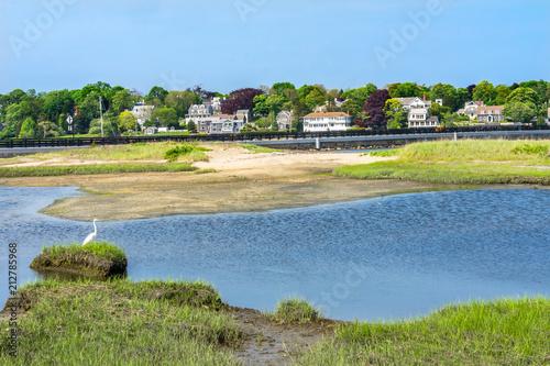 In de dag Golf Great White Egret New Padnaram Bridge Harbor Village Dartmouth Massachusetts