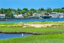 Great White Egret New Padnaram Bridge Harbor Village Dartmouth Massachusetts