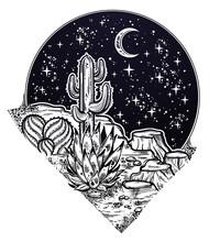 Night Desert Of America With C...