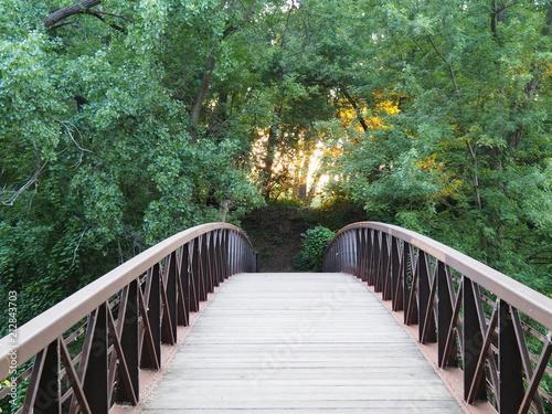 Canvas Prints Bridge Bridge through
