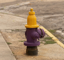 Fire Hydrant Painted In Purple And Yellow