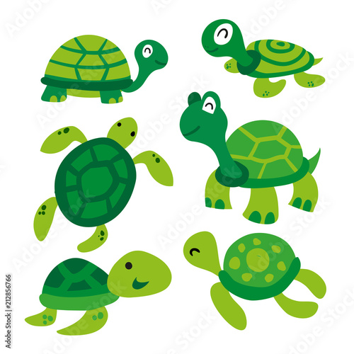 Obraz na plátně turtle vector collection design