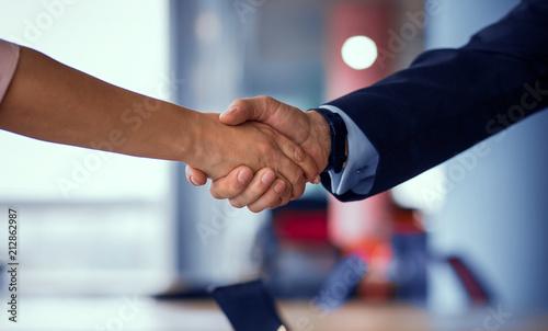Business partners handshaking Canvas Print