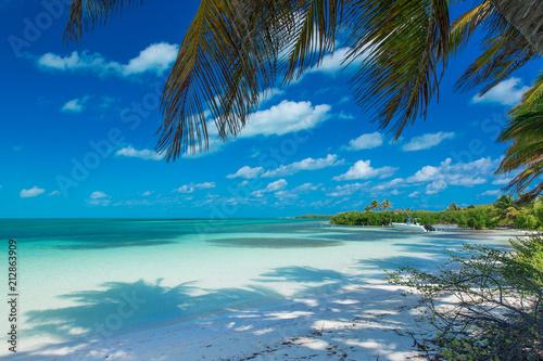 Papiers peints Singapoure beach and tropical sea