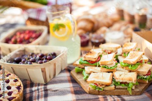 Fotografie, Obraz photo outdoor picnic picnic, nature in the garden, snacks, cupboards, close-up