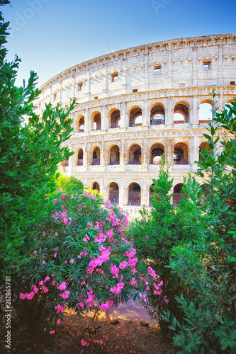 Fotografie, Obraz  Colosseum, Rome, Italy