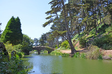 River And Bridge In The Golden Gate Park, San Francisco