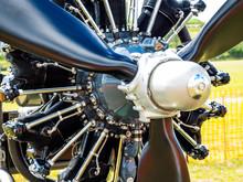 Radial Aeroplane Engine