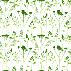Fototapeta Seamless pattern with herbal silhouettes