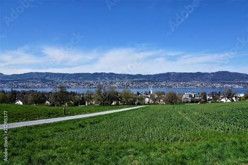 Fotografie, Obraz  Wiese und Wanderweg in Zollikon im Kanton Zürich in der Schweiz im April