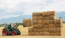 Hay Tractor Stacking Hay Bales...