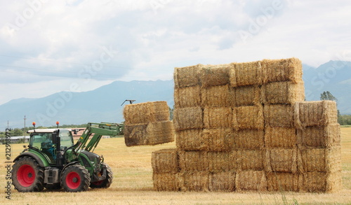 Hay tractor stacking hay bales on a big pile Canvas Print