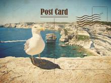 Vintage Summer Postcard. Seagu...