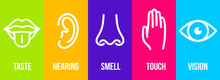Creative Vector Illustration Line Icon Set Of Five Human Senses. Vision, Hearing, Smell, Touch, Taste Isolated On Transparent Background. Art Design Nose, Eye, Hand, Ear, Mouth With Tongue Element