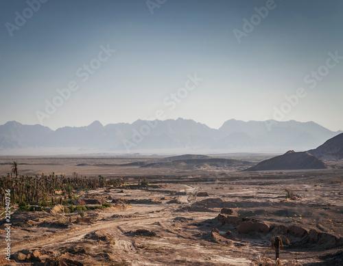 Poster Donkergrijs desert landscape view in garmeh oasis southern iran
