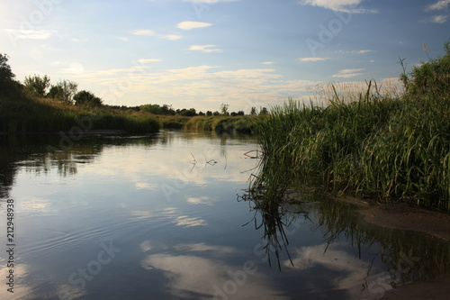 Foto op Aluminium Rivier River in the summer