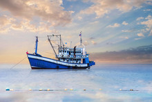 Blue - White Fishing Boat In T...