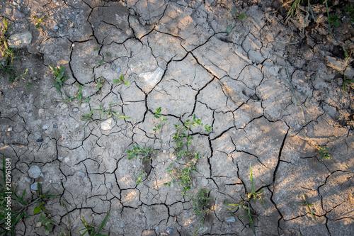 Fotografie, Obraz  Vertrockneter, ausgelaugter Boden, Dürre / Desertifikation