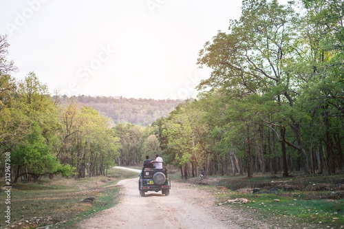 Safari road in the India country. Wilderness and freedom. Adventure experience from safari in India. View on the road above the outdoor car.