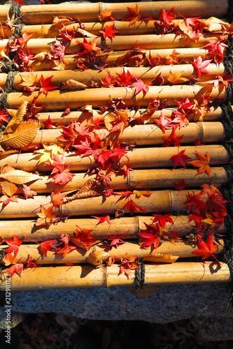 Fotobehang Rood paars 紅葉の境内の風景28