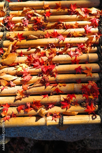 Papiers peints Rouge mauve 紅葉の境内の風景28