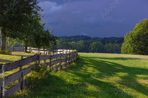 Tuinposter Wijngaard wooden fence at paddock