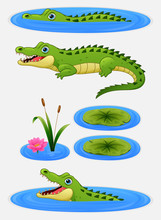 Set Of Cartoon Crocodile And W...